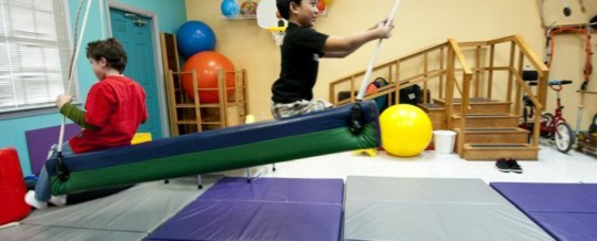 The Role of The Pediatric Physical Therapist for Children with Autism Spectrum Disorder